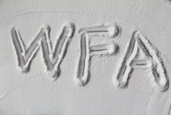 Електрокорунд білий WFA